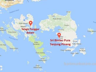 Jadwal Kapal Ferry Batam Tanjung Pinang dengan Oceanna Baruna Ferry